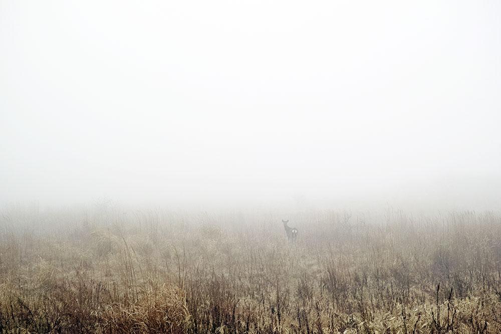 Mikio Hasui Hidden Landscape 2